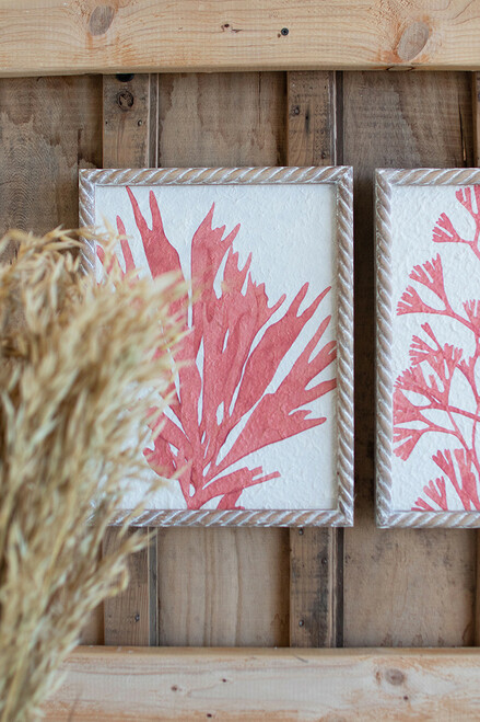 Coral Prints with Frames - Set of 4