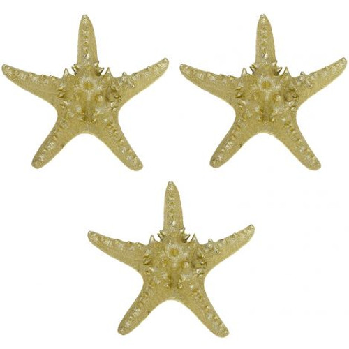 "Knobby Starfish in Electro Gold - 7"" - Set of 3"