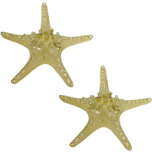 "Knobby Starfish in Electro Gold - 9.5"" - Set of 2"