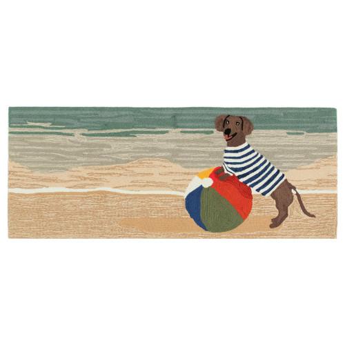 Frontporch Coastal Dog Indoor/Outdoor Rug - 4 Sizes