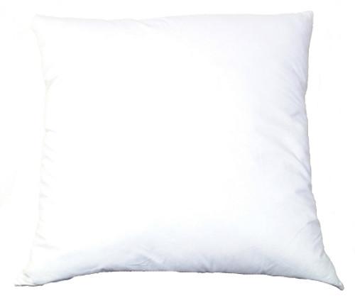Double Rainbow Fish Needlepoint Pillow