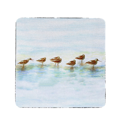 Avocets Coasters - Set of 4