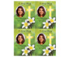 Plumeria DIY Funeral Card Template front