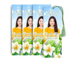 White Blossom Memorial Funeral Bookmark Design & Print (Pack of 25)