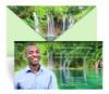 Waterfall Envelope Fold Funeral Program Design & Print (Pack of 25)