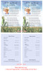 Cornfield Funeral Flyer Half Sheets Template inside view