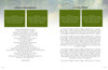 Serenity DIY Large Tabloid Funeral Booklet Template inside view 2