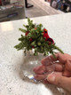 Mistletoe Cardinal Acrylic Sparkling Ornament actual hand held