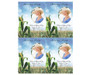 Cornfield DIY Funeral Card Template front