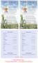 Cornfield Funeral Flyer Half Sheets Template inside view