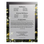 Serene DIY Large Tabloid Funeral Booklet Template back page