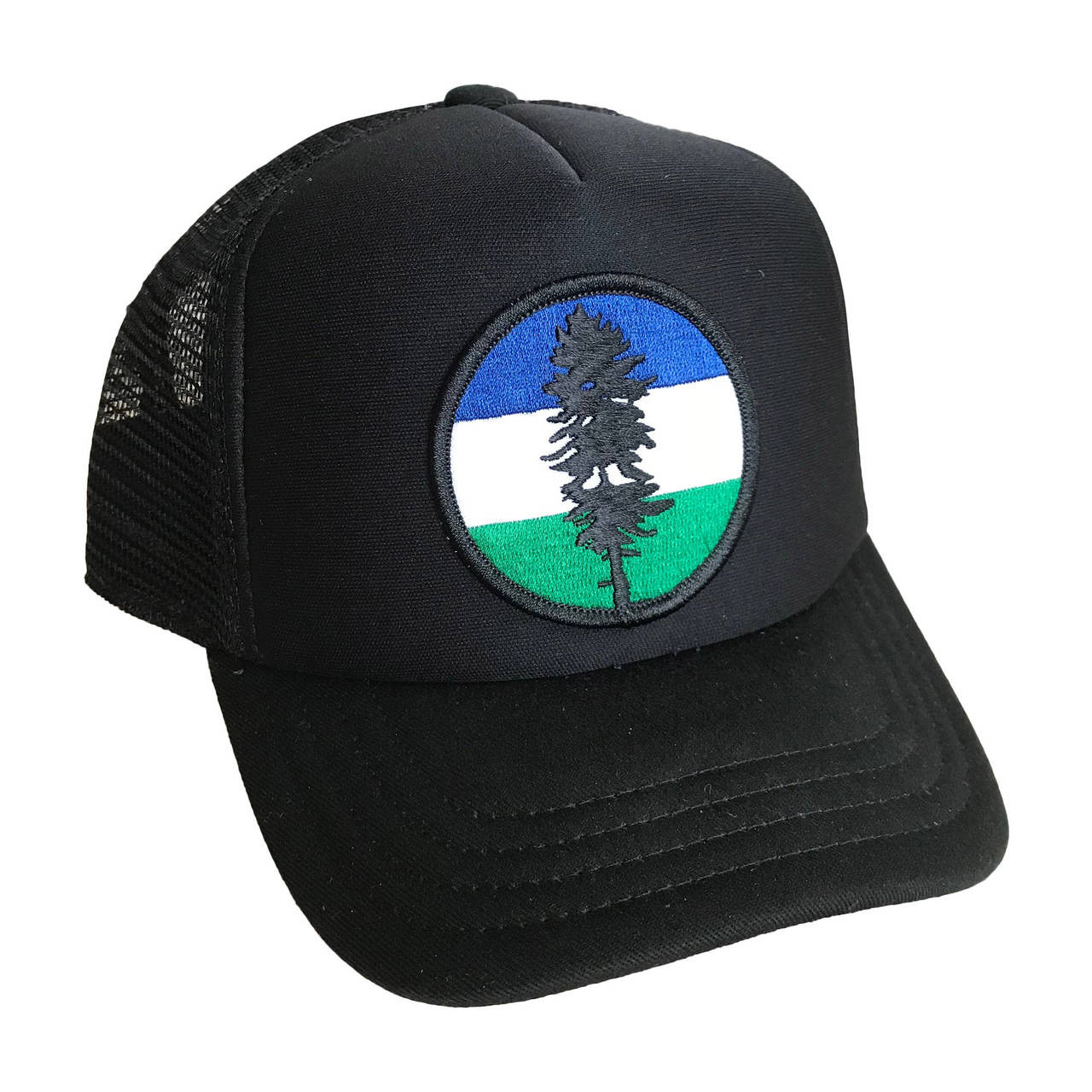 5f690346292ac Cascadia Flag baby   toddler foam trucker hat