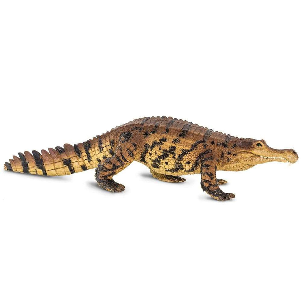 Safari Ltd Sarcosuchus side 2