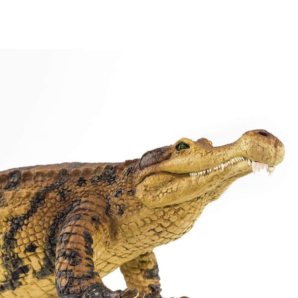 Safari Ltd Sarcosuchus closeup