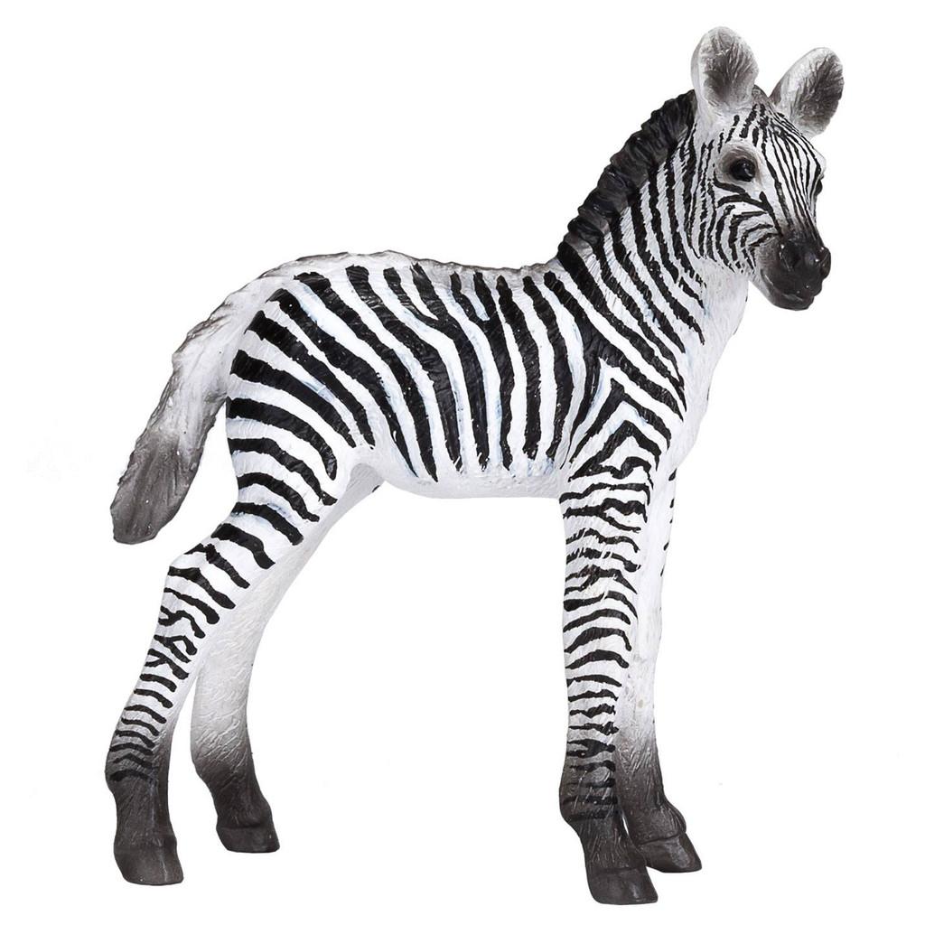 Mojo Zebra Foal 2020