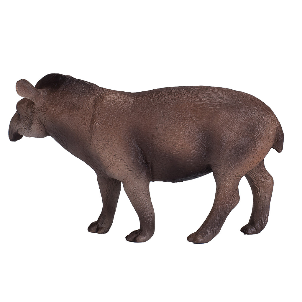 Mojo Brazilian Tapir side view