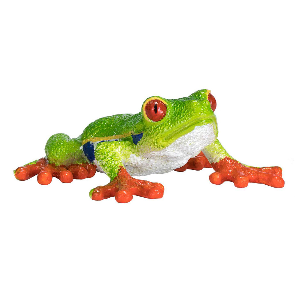 Mojo 2020 Red Eyed Tree Frog