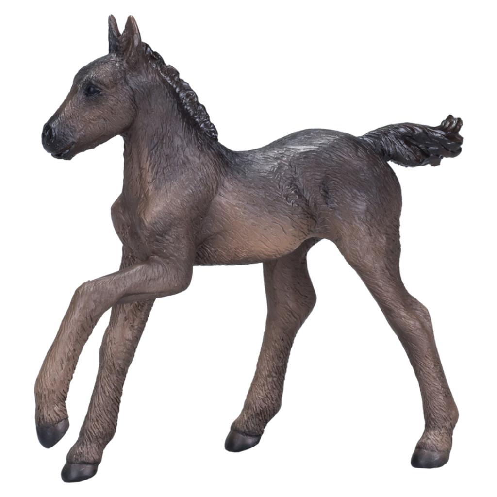 Mojo Arabian Foal Black