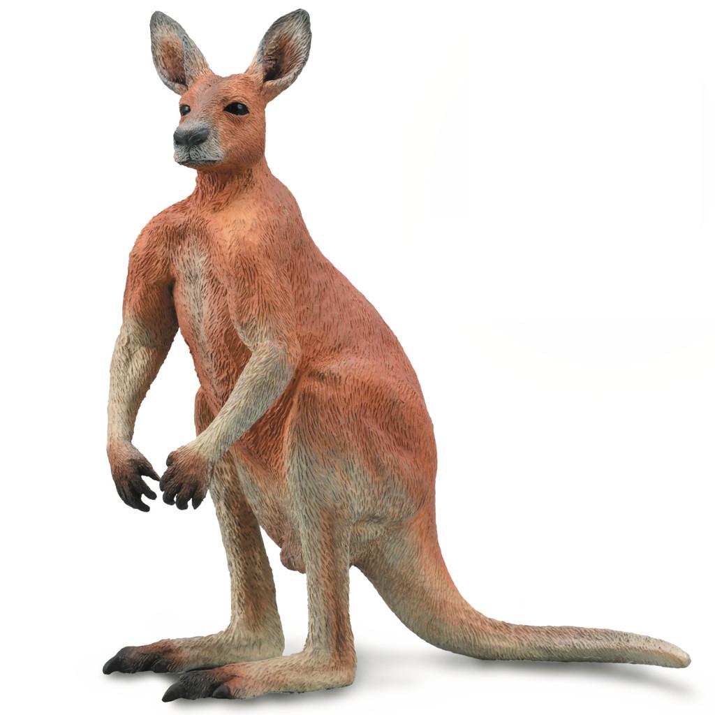CollectA Kangaroo Male
