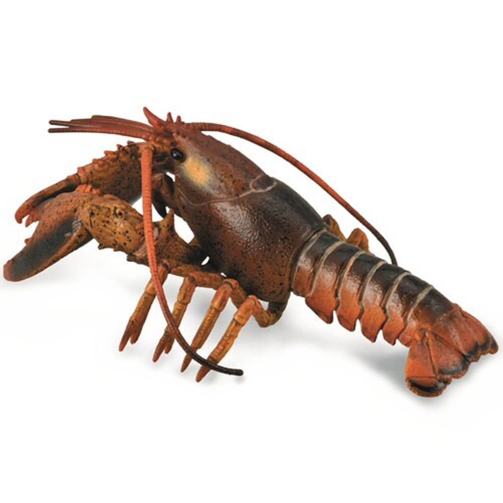 CollectA Lobster