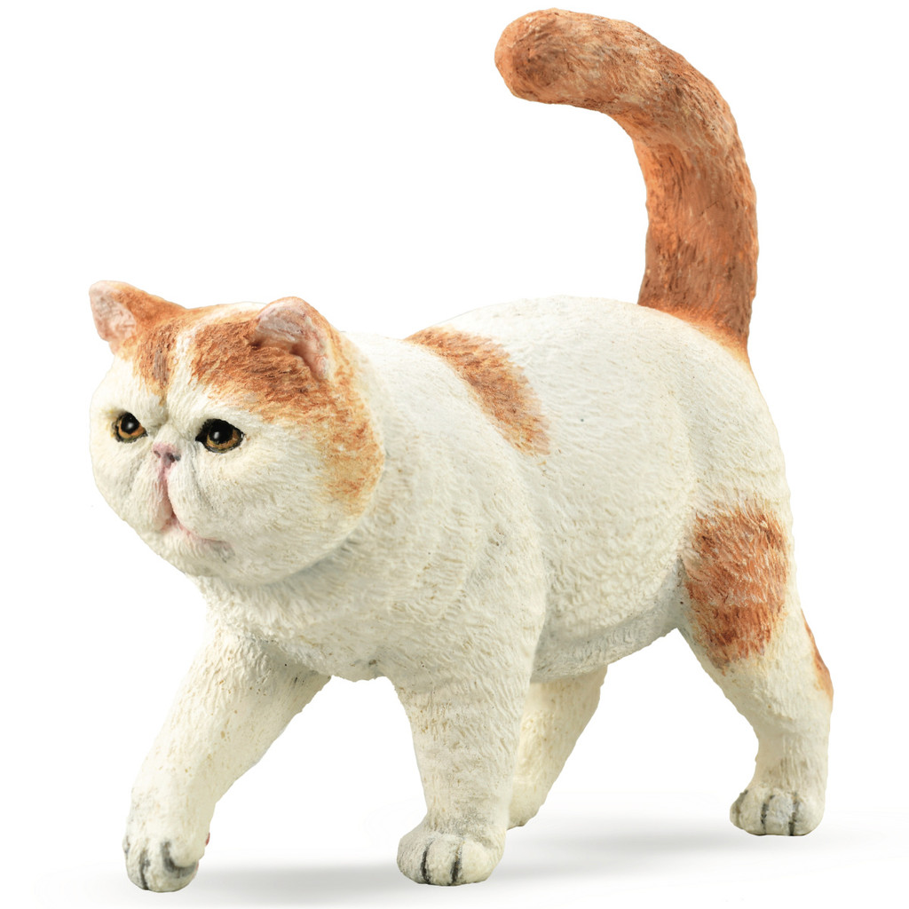 CollectA Exotic Shorthair Cat