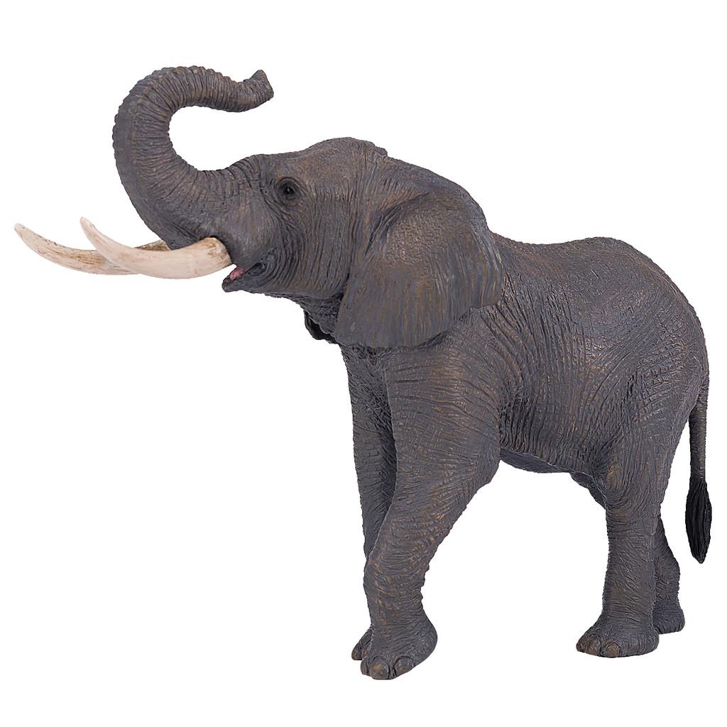 Mojo African Bull Elephant