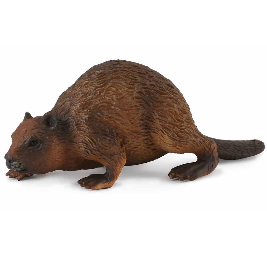 CollectA Beaver