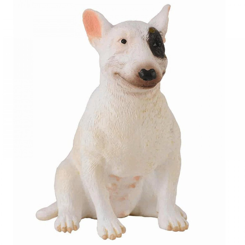 Bull Terrier Female CollectaA
