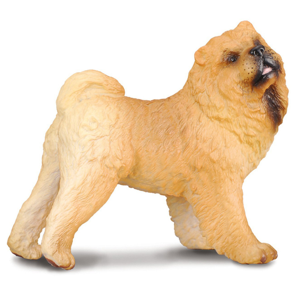 Chow Chow CollectA