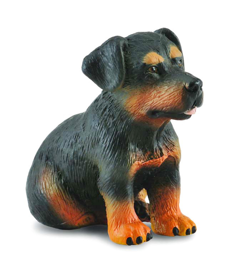 CollectA Rottweiler Puppy