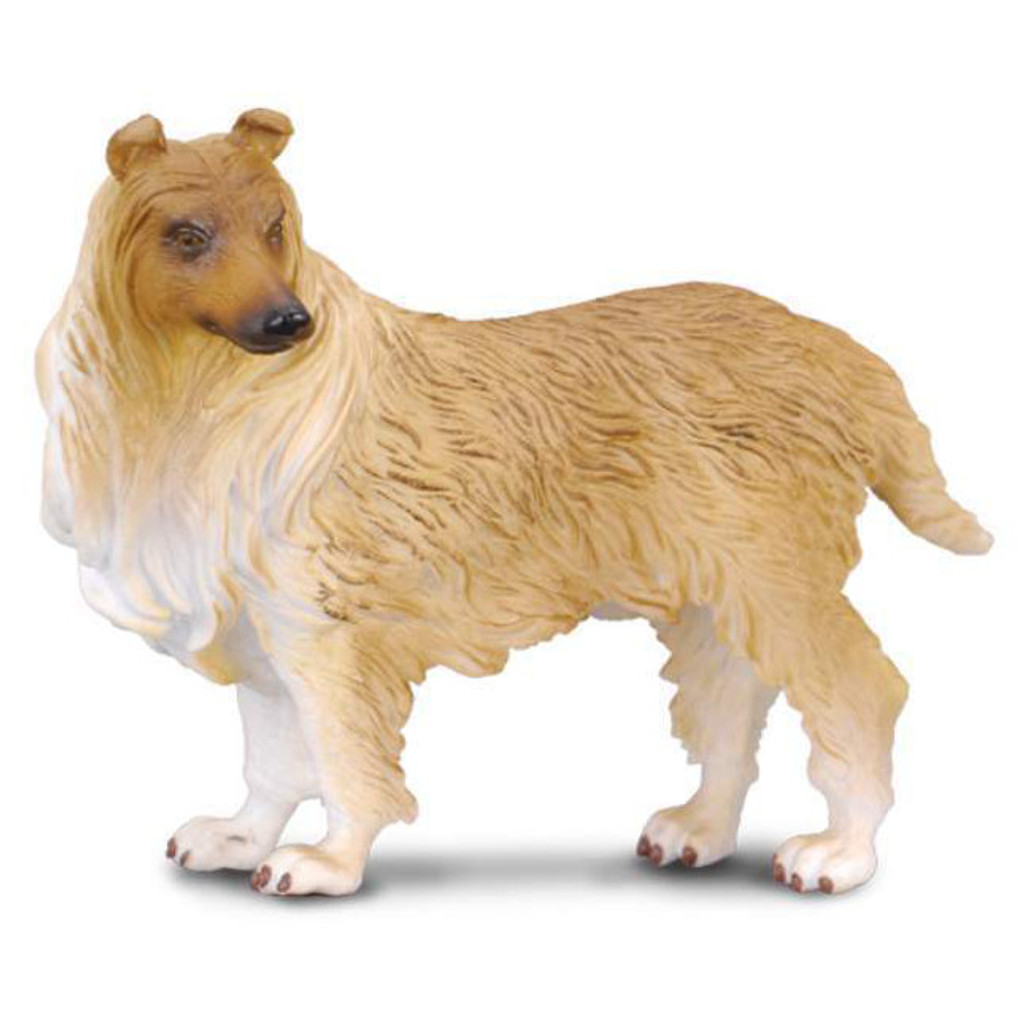 CollectA Rough Haired Collie