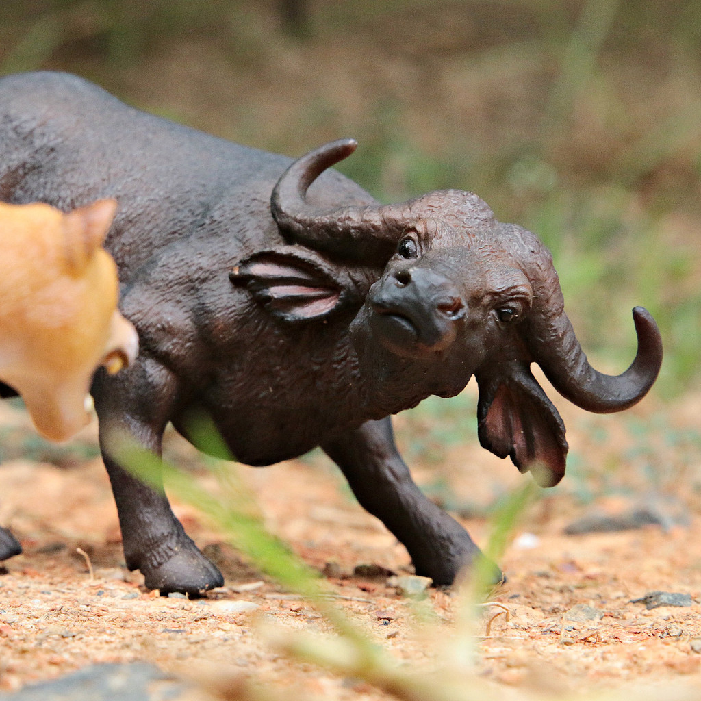 CollectA African Buffalo
