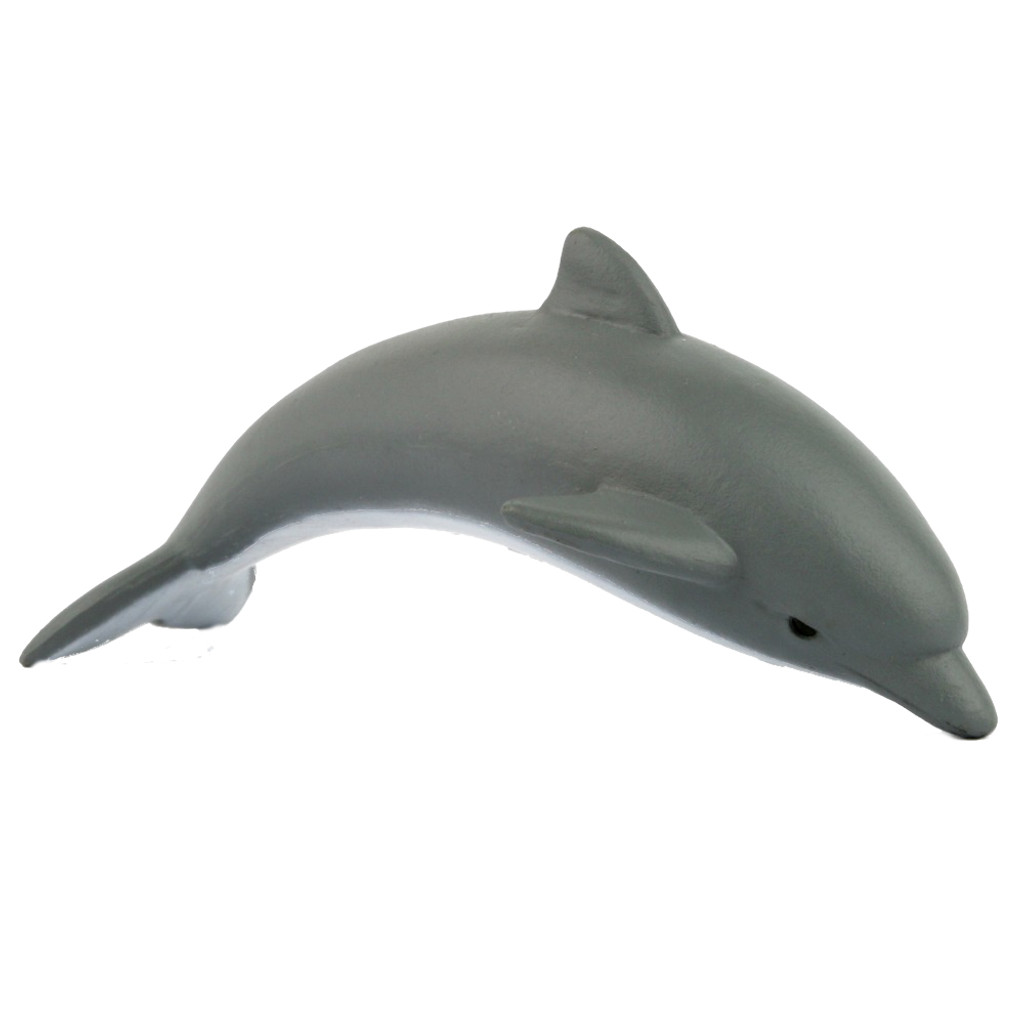 Science and Nature Small Dolphin