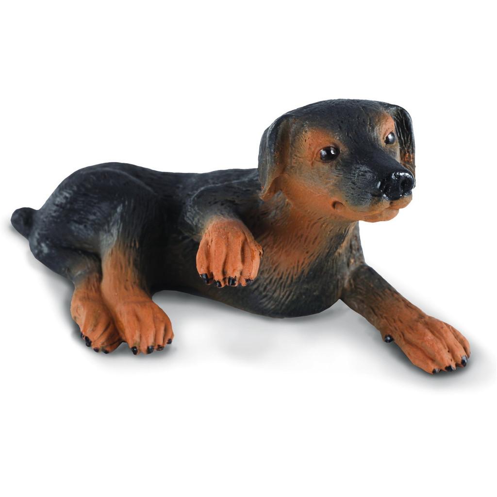 CollectA Doberman Pinscher Puppy