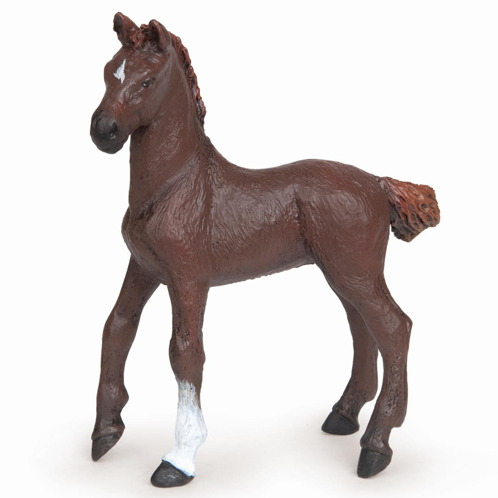 Dark Alezan English Thoroughbred Foal