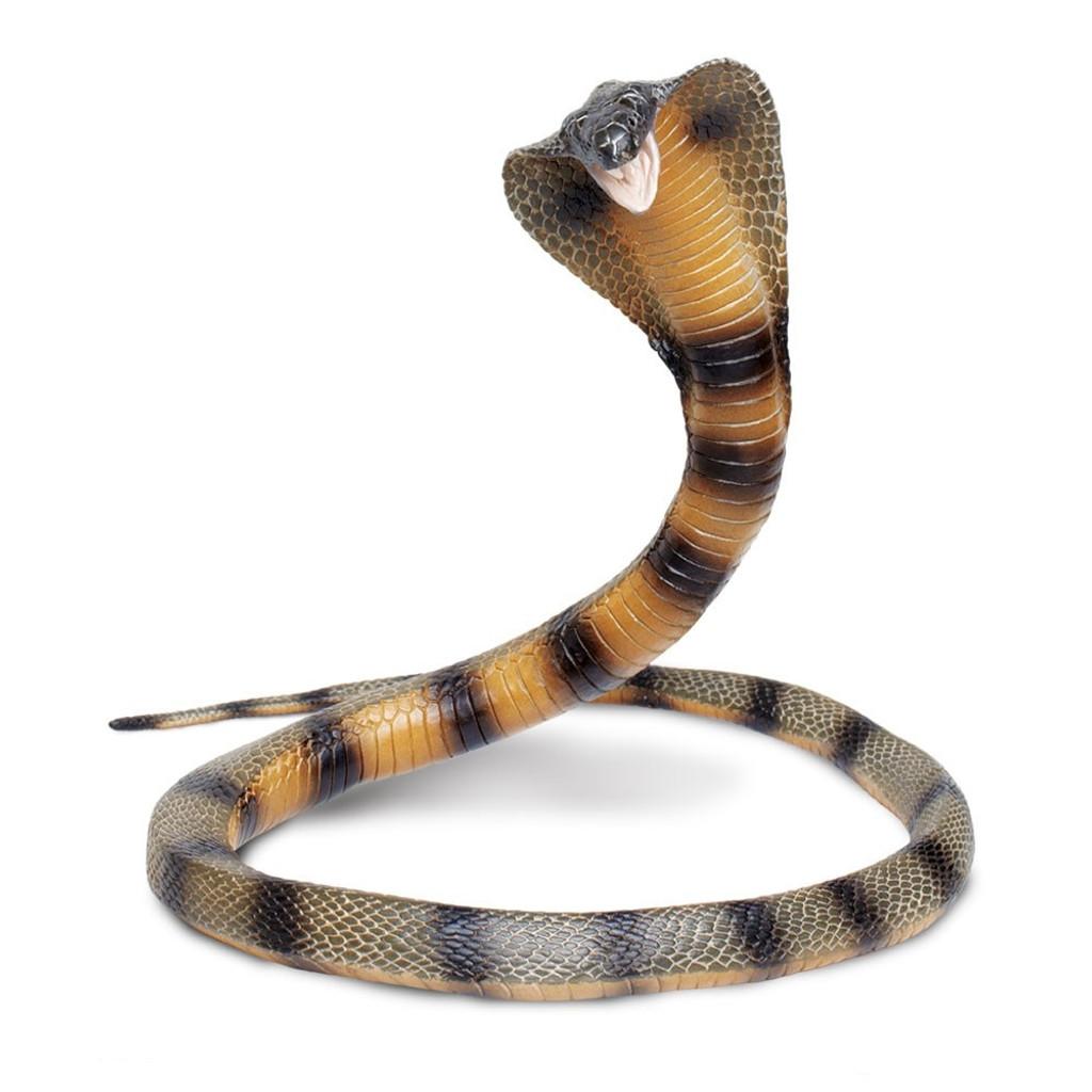 Safari Ltd Cobra IC