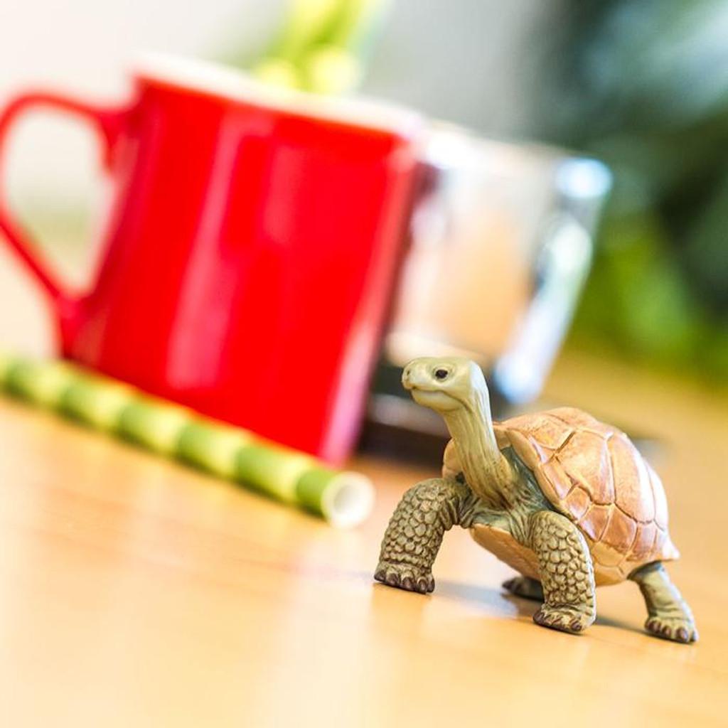 Safari Ltd Giant Tortoise