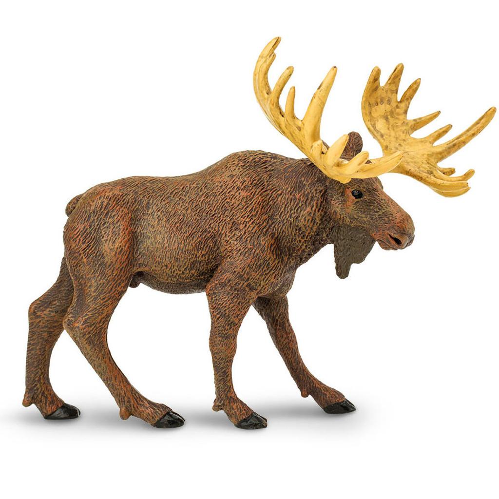 Safari Ltd Moose