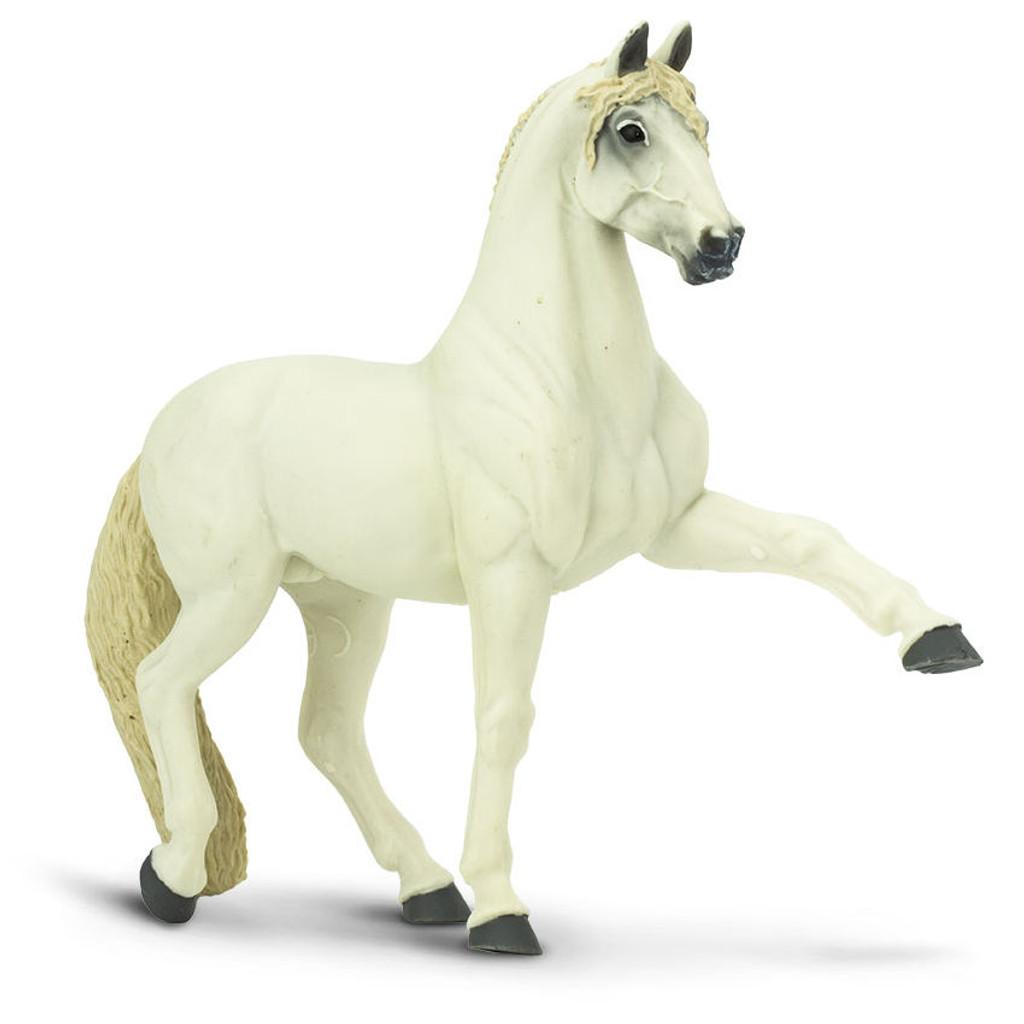 Andalusian Stallion Safari Ltd
