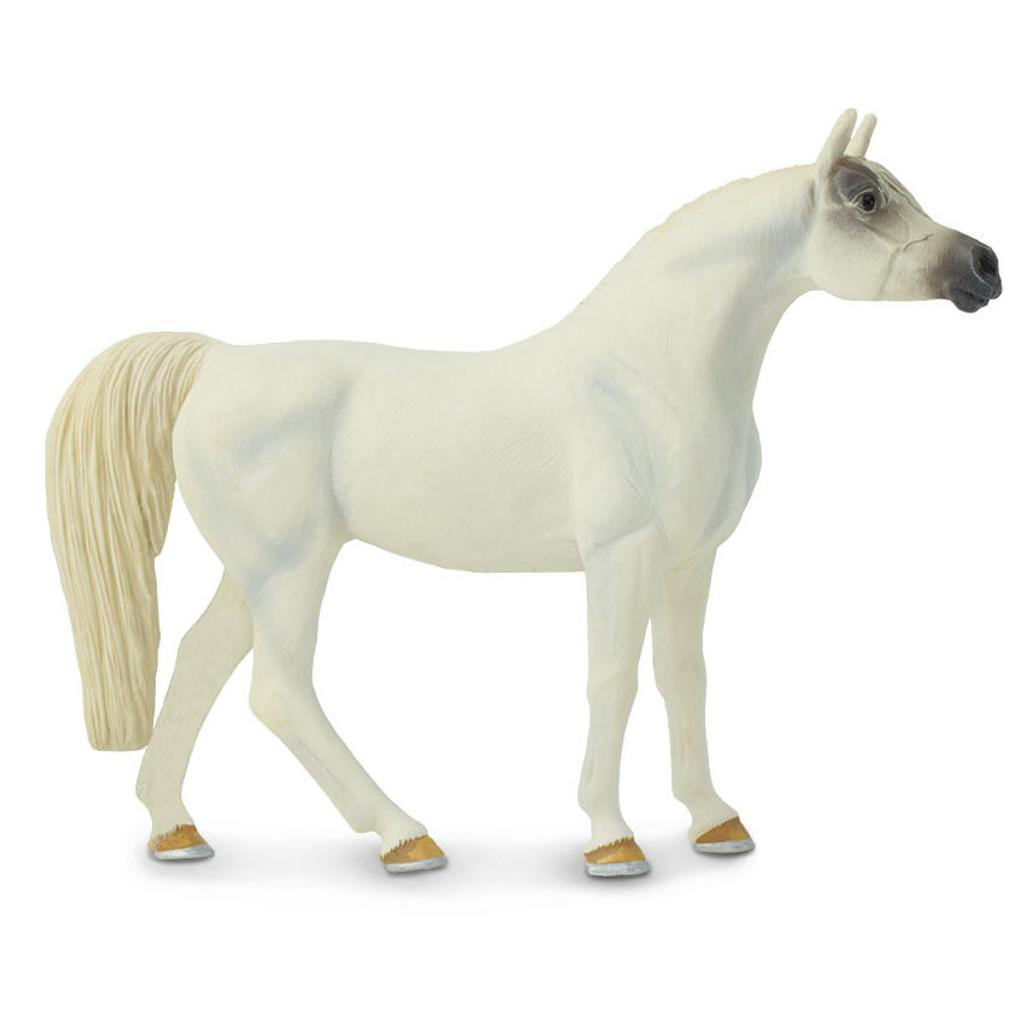 Arabian Mare White