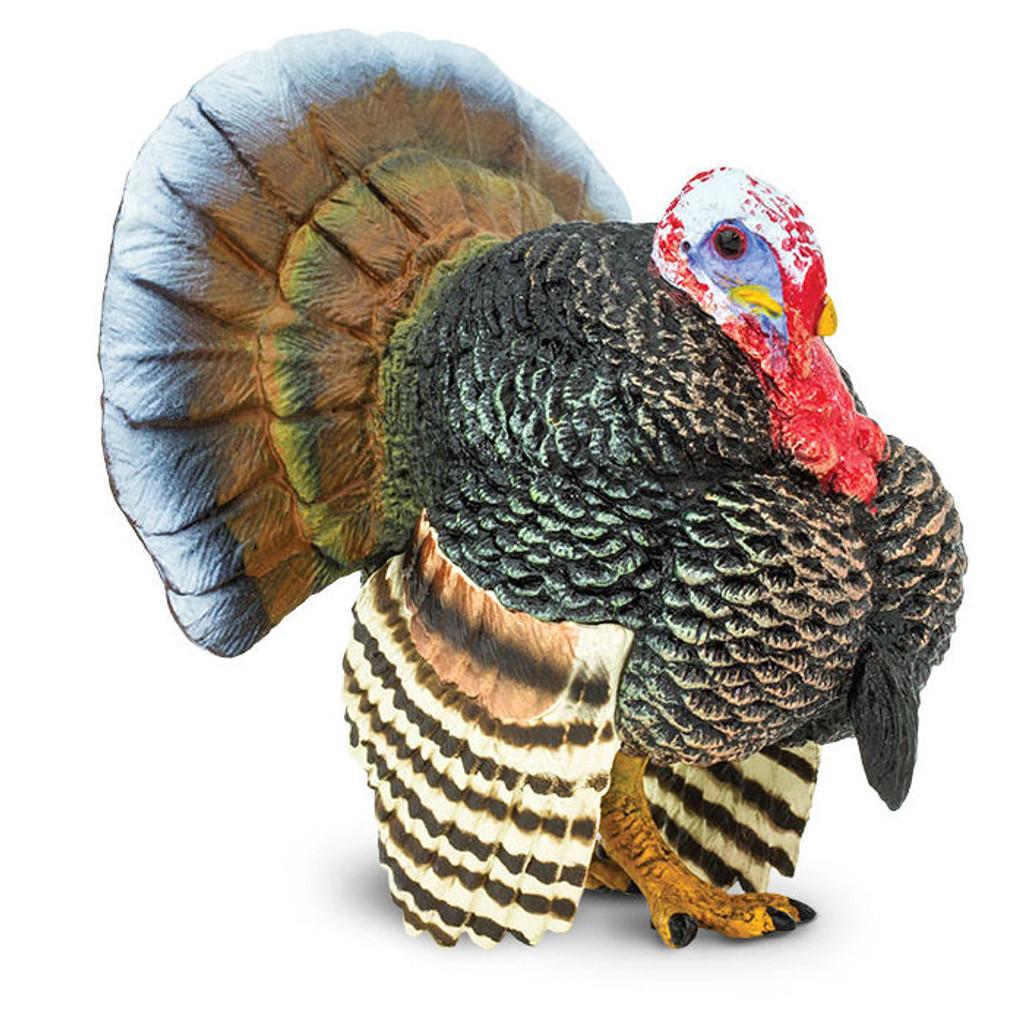 Safari Ltd Turkey