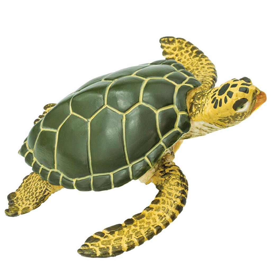 Safari Ltd Green Sea Turtle