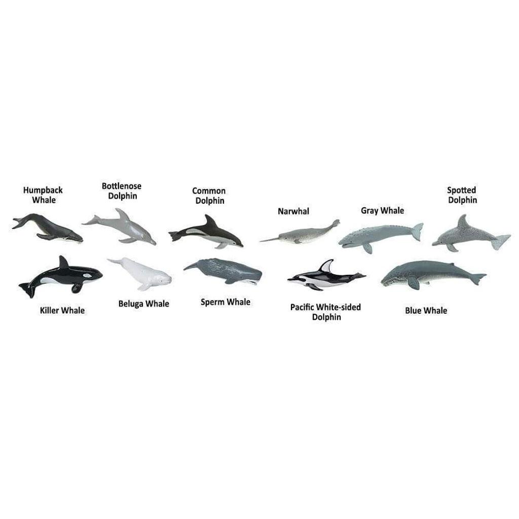 Safari Ltd Whales & Dolphins Toob