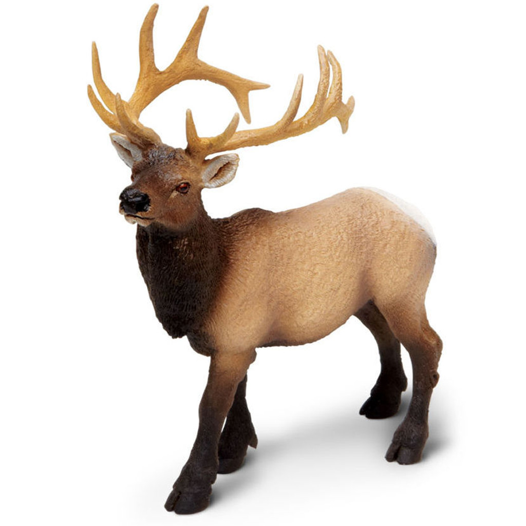 Safari Ltd Elk Bull