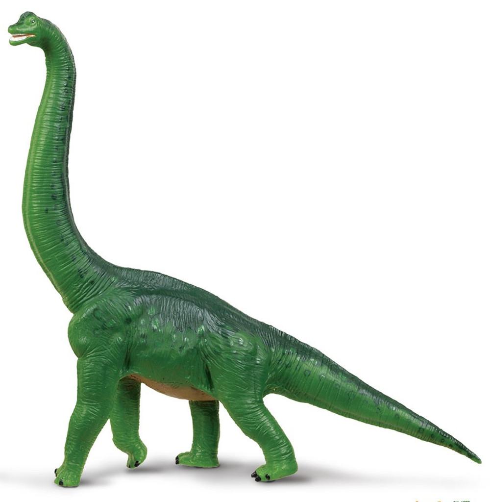 Brachiosaurus 2013