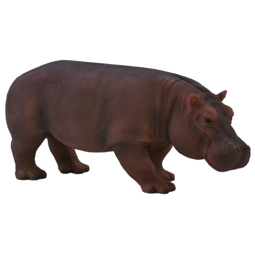 Mojo Hippopotamus Female
