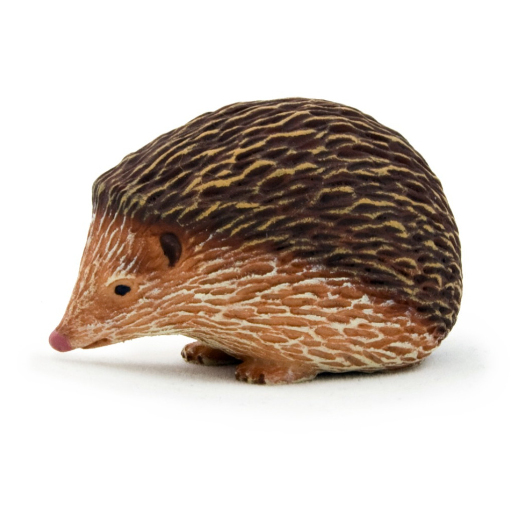 Mojo Hedgehog