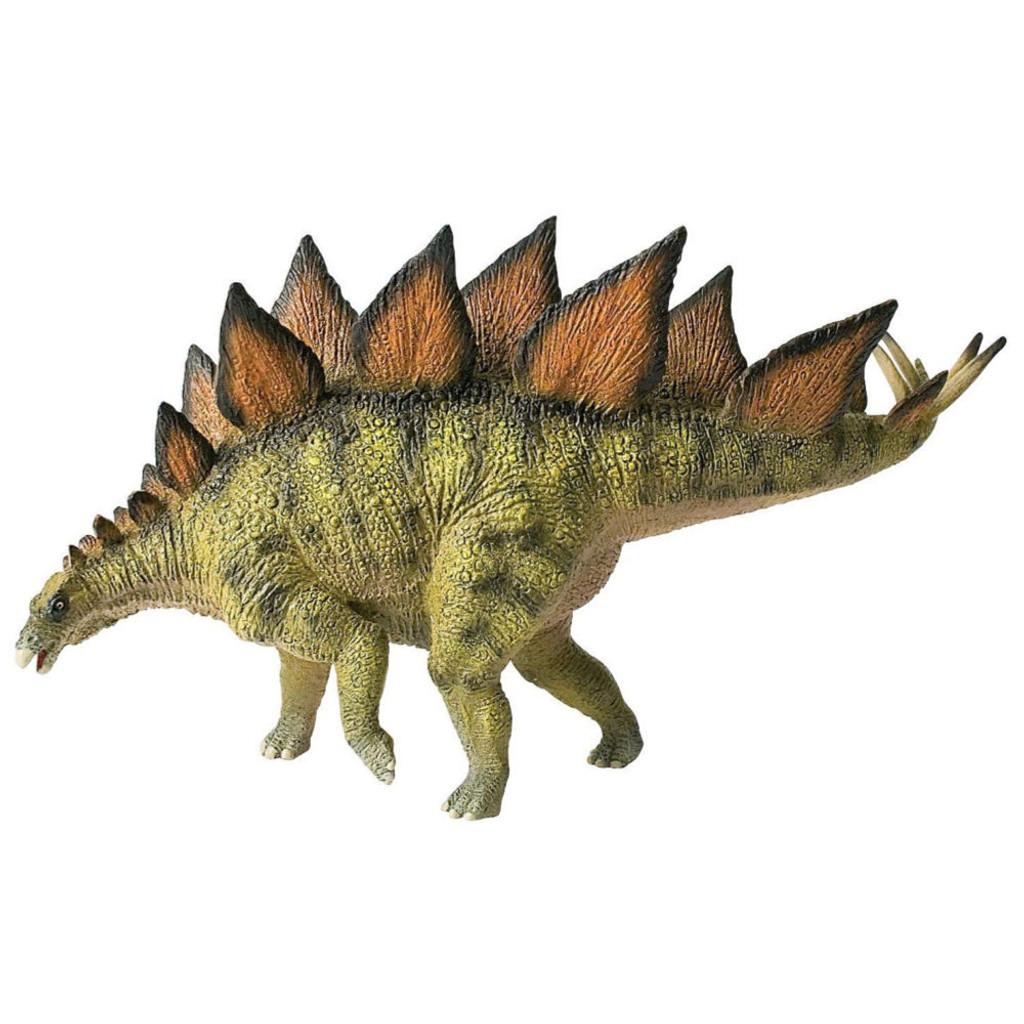 Stegosaurus Museum Line