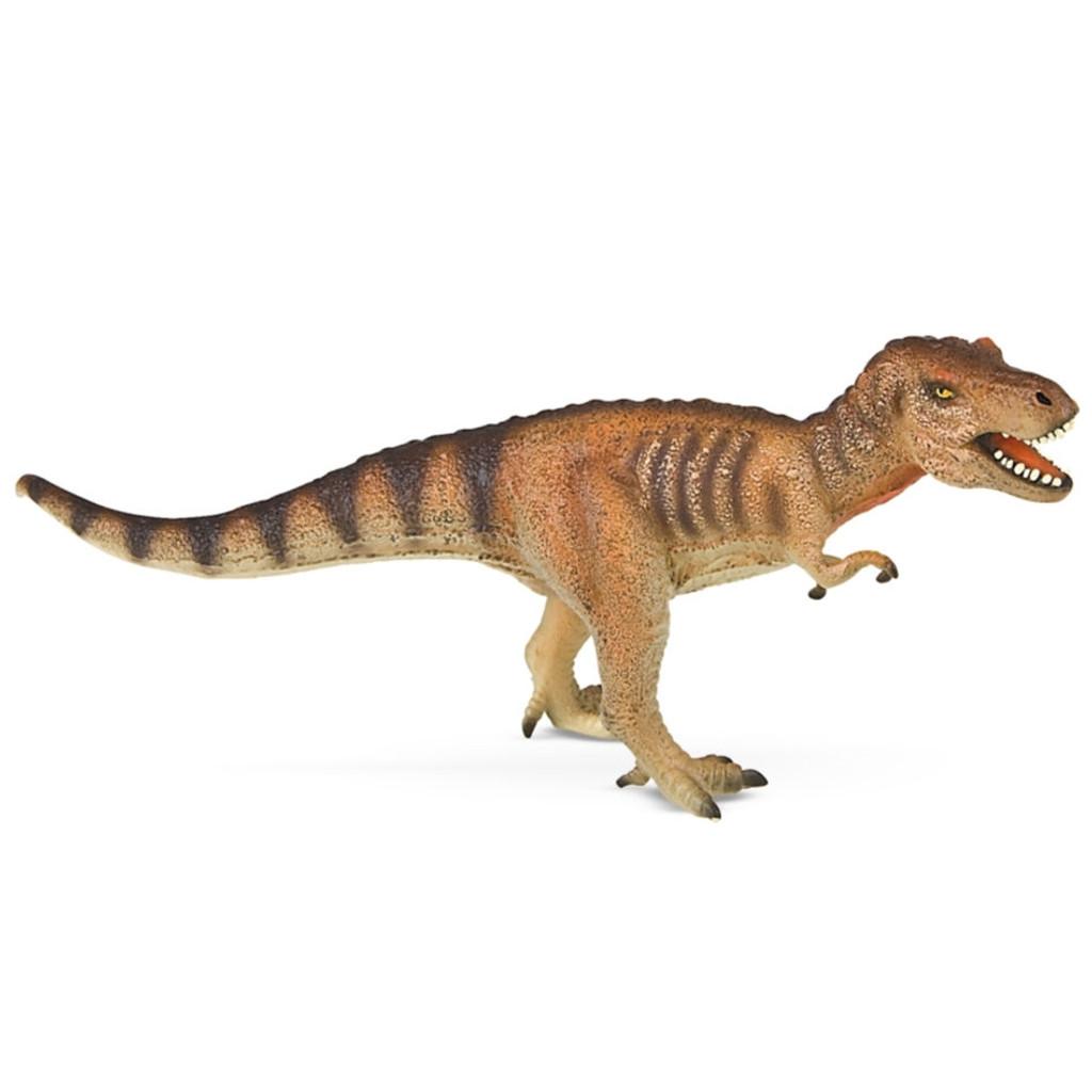 Tyrannosaurus Museum Line