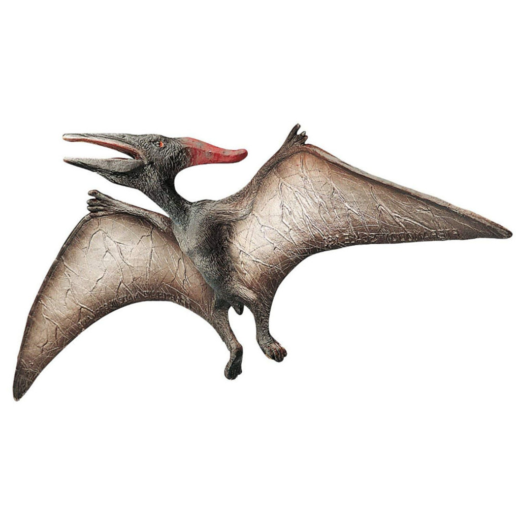 Pteranodon Museum Line